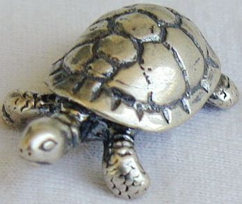 Turtle son miniature