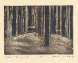 LIGHT IN THE FOREST--2; etching signed & numbered - $34.30