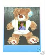HIGH SCHOOL MUSICAL Zac Efron CUDDLY TEDDY BEAR - $15.99