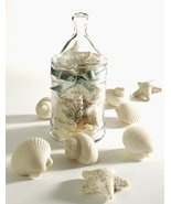 Gianna Rose Seashell Soaps in Apothecary Jar -  Great Gift! - $31.99