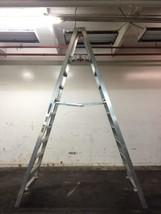Werner 10 Ft. Platform Ladder PT310 - $275.00