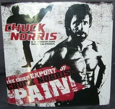 Chuck Norris 2009 16 Month Collectible Wall Calendar NEW & RARE! SEALED - $19.96