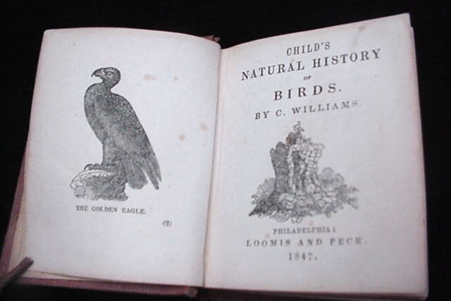 Child's Natural History Of Birds Antique Miniature Book 1847