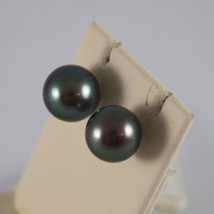 18K WHITE GOLD EARRINGS, WITH FRESHWATER BLACK PEARLS, 8mm, 0.3 inches DIAMETER image 2