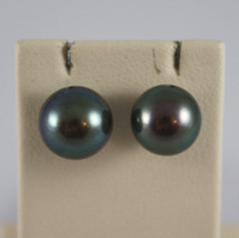 18K WHITE GOLD EARRINGS, WITH FRESHWATER BLACK PEARLS, 8mm, 0.3 inches DIAMETER image 1