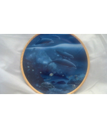 Hawaii Dolphins - Mammals, Fish,  Sea, Collector Plates, Hamilton Collec... - $22.50