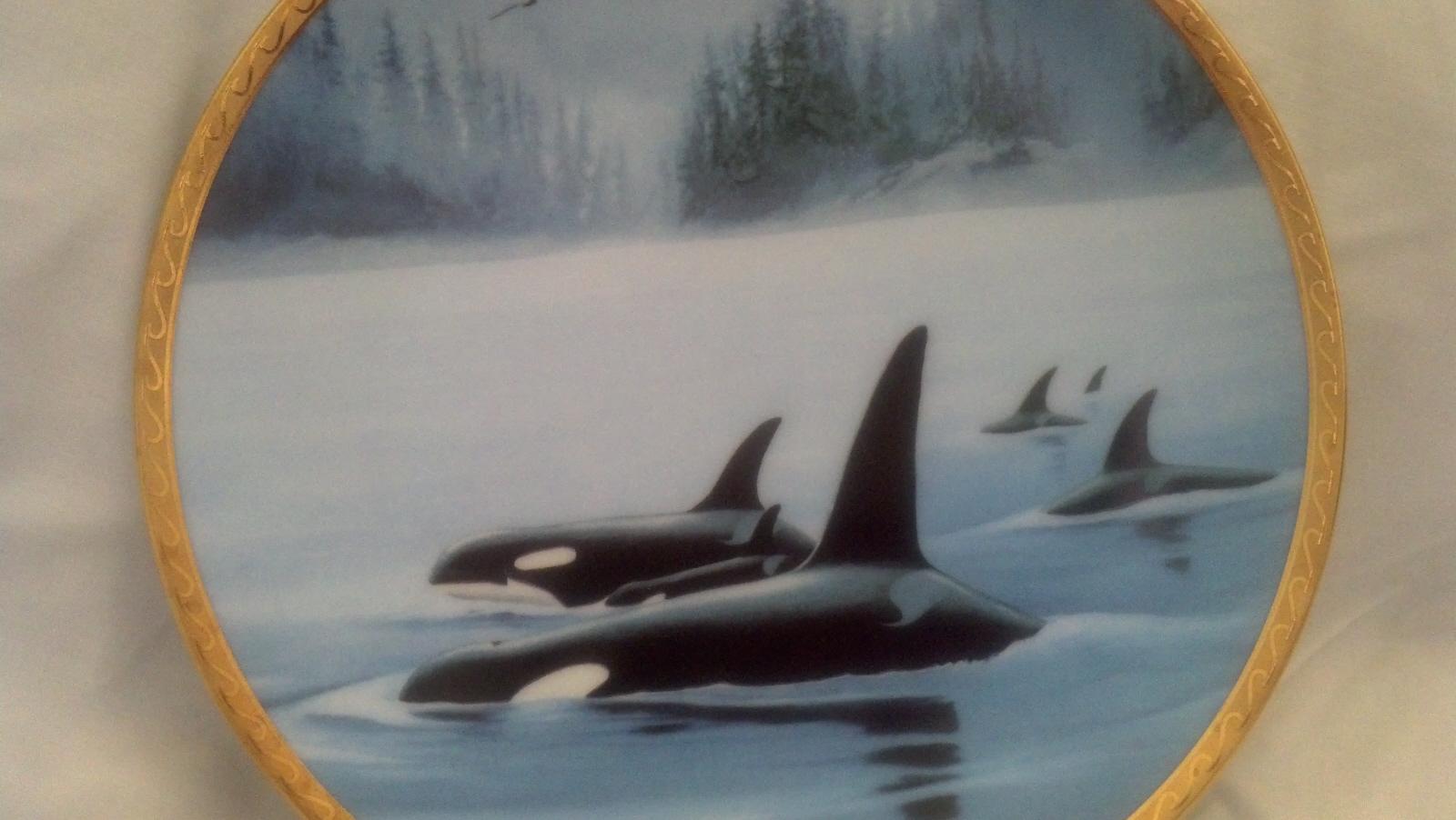 Orcas 1a
