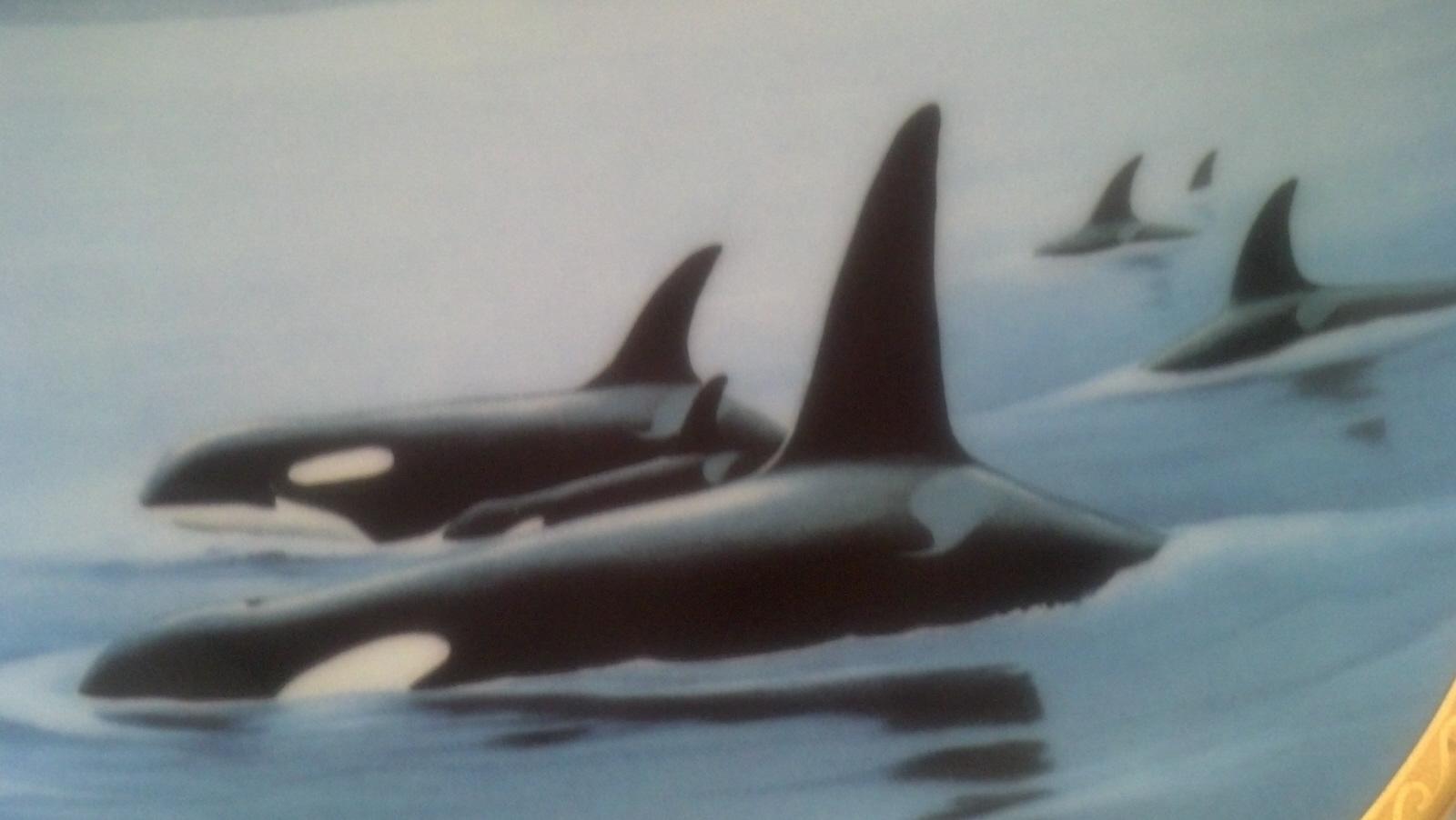 Orcas - Mammals, Fish, Whales, Sea, Collector Plates, Hamilton Collection