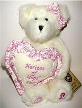 "Boyds Bear ""2004 Horizon of Hope"" #95300LBC- 8"" Plush Bear- Longaberger ... - $24.99"