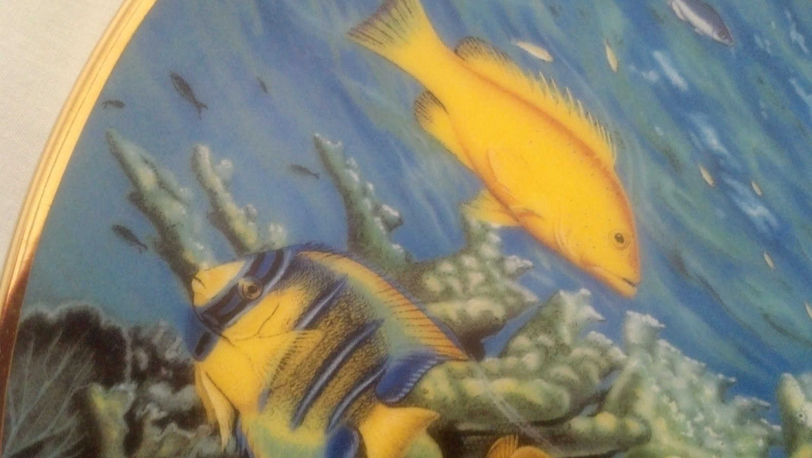 Hamilton Collection Caribbean Spectacle,Coral Paradise,Fish, Aquarium,Sea, Ocean