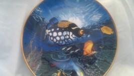 Hamilton Collection Tropical Pageantry,Coral Paradise,Fish, Aquarium,Sea, Ocean - $22.50