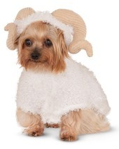 Animal RAM Sheep Goat Horns Pet Dog Costume 580365lxl Large - €17,28 EUR