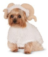 Animal RAM Sheep Goat Horns Pet Dog Costume 580365lxl Large - $20.32