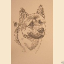 Akita dog art portrait drawing. PRINT 44 Kline ... - $60.00