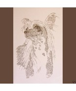 CHINESE CRESTED DOG PRINT #242 ART DRAWN FROM WORDS by Stephen Kline GREAT GIFT - $39.96
