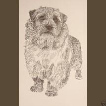 Norfolk Terrier Dog Art Portrait Print #31 Kline adds dog name free WORD... - $60.00