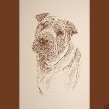 Chinese Shar Pei Dog Art Portrait Print #74 Kline will add dogs name fre... - $60.00