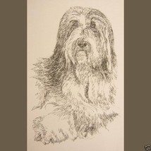 Bearded Collie Dog Art Portrait Print #39 Kline adds dog name free. Word... - $60.00