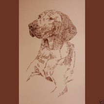 Vizsla Dog Art Portrait Print #72 Kline adds do... - $60.00
