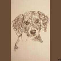 Beagle Dog Signed Kline Art #44 Artist adds you... - $60.00