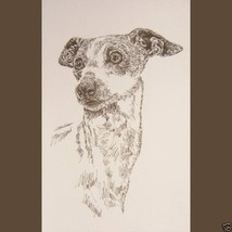 ITALIAN GREYHOUND DOG PRINT #236 Drawn from wor... - $60.00