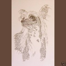 CHINESE CRESTED Dog Art Portrait Print #31 Klin... - $60.00