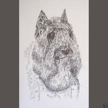 BOUVIER des FLANDRES DOG ART PRINT #32 Stephen ... - $60.00