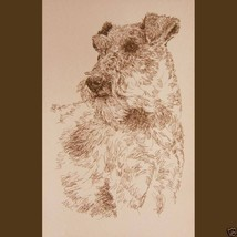 Irish Terrier Dog Art Portrait Print #236 Kline Draws dogs name free. GR... - $60.00