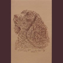 American Water Spaniel Dog Art Word Drawing 40  Kline Draws Dogs Name Fr... - $60.00