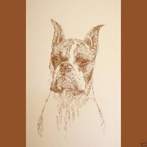 BOXER DOG ART CROPPED Print #44 DRAWN FROM WORD... - $60.00