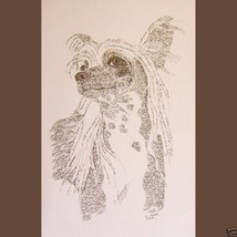 CHINESE CRESTED DOG ART PRINT #58 Stephen Kline... - $60.00