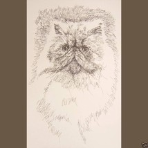 Persian Cat Art Print Lithograph #93 Stephen Kl... - $59.95