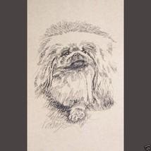 Pekingese Dog Art Print #30 Kline draws your dogs name free. PEKE WORD D... - $60.00