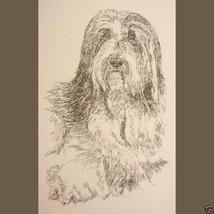 Bearded Collie Dog Breed Art Print #235 Kline adds dogs name free. BEARD... - $60.00