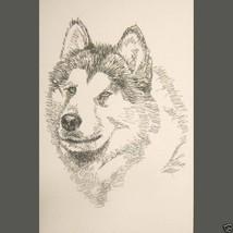 Alaskan Malamute Dog Art Portrait Print #93 Kline adds your dogs name fr... - $60.00