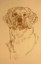 Golden Retriever Dog Art Portrait #237 Kline Adds Your Dogs Name Free. Gift - $49.95