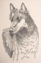 Belgian Sheepdog Dog Art Print #25 Stephen Kline adds your dogs name free. GIFT - $49.95