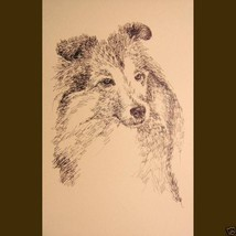 Shetland Sheepdog Dog Art Print #135 Kline adds your dogs name free SHEL... - $60.00