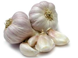 GARLIC ESSENTIAL OIL  1/4 oz  - $7.00
