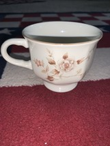 Vintage Cup by Mikasa Continental Ivory Tivoli Garden Japan - $10.00
