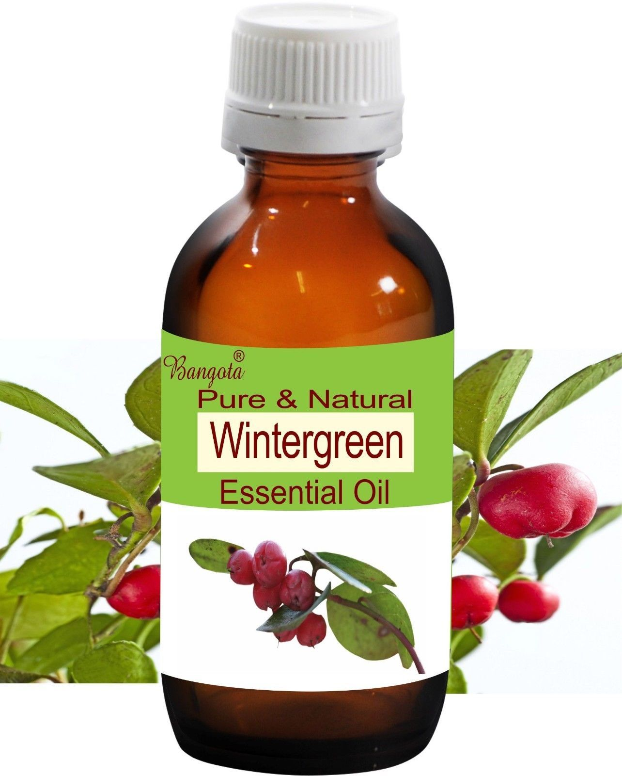 Wintergreen Pure Natural Essential Oil 10 ml Gaultheria procumbens by Bangota