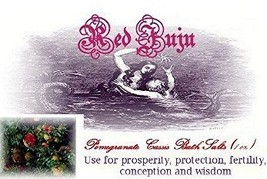 Pomegranate Cassis Bath Salts - Use for Prosper... - $4.99