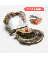 Light Red OYSTER PEARL  INDIVIDUALLY WRAPPED AAA+++  10 PCS New arrival - $27.69