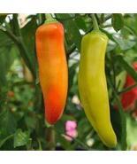 25 Seeds of Capsicum Annuum - Hungarian Hot Peppers - $11.74