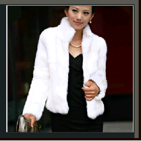 Elegant Soft Mink Faux Fur Coat Jacket with Mandarin Collar in 6 Colors