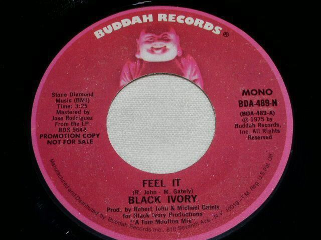 Primary image for BLACK IVORY FEEL IT PROMO FUNK 45 RPM RECORD VINTAGE 1975