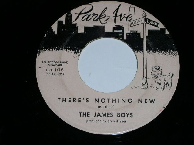 Primary image for The James Boys There's Nothing New Hey Sweet Girl 45 Rpm Record Park Ave Label