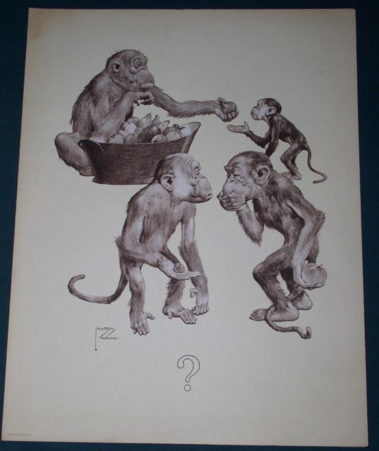 Primary image for LAWSON WOOD CHIMPANZEE ARTWORK 1934 ADVERTISING FLYER CHIMPANZEE