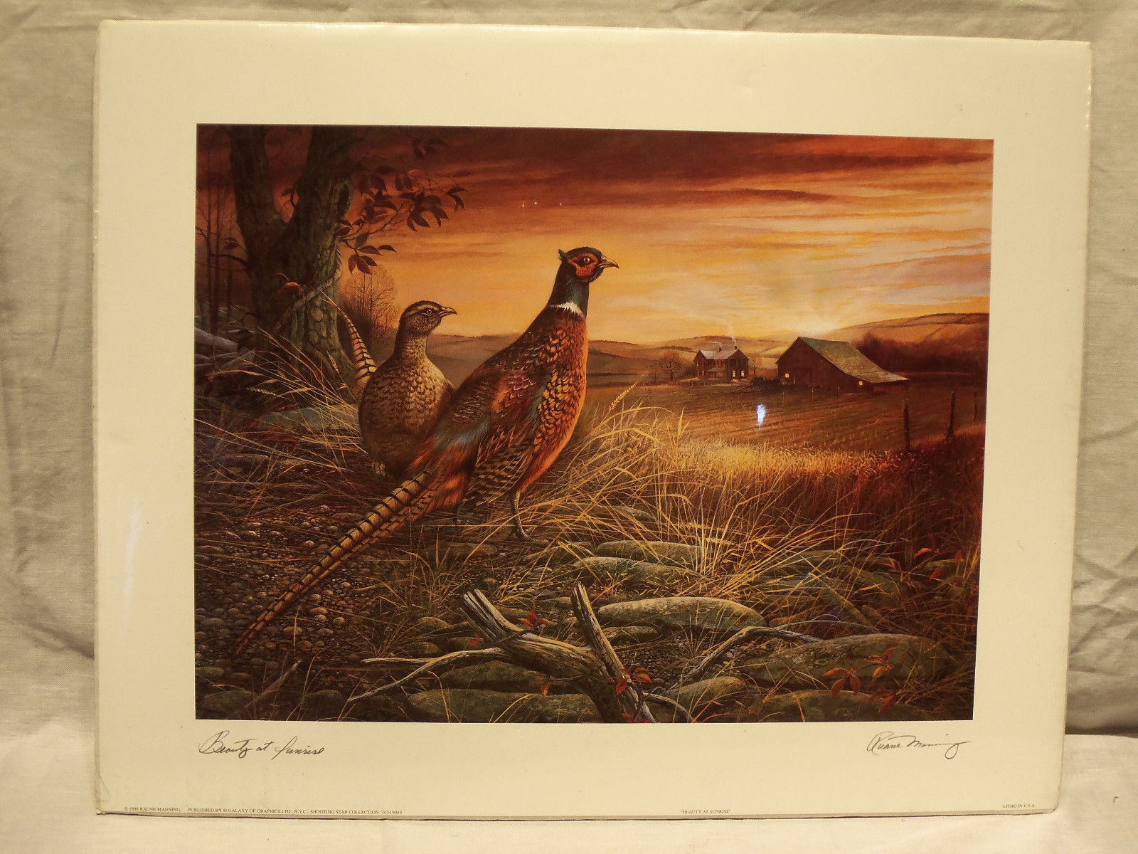 Primary image for Beautiful 1998 Signed Animal Birds Litho by Ruane Manning ~ Beauty At Sunrise ~