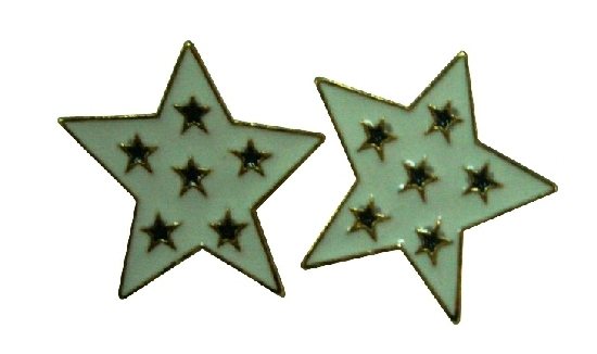 Star Shaped Earrings w/ Small Stars Embedded Christmas Time